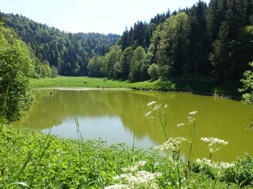 der idiyllische See bei Col de Préles