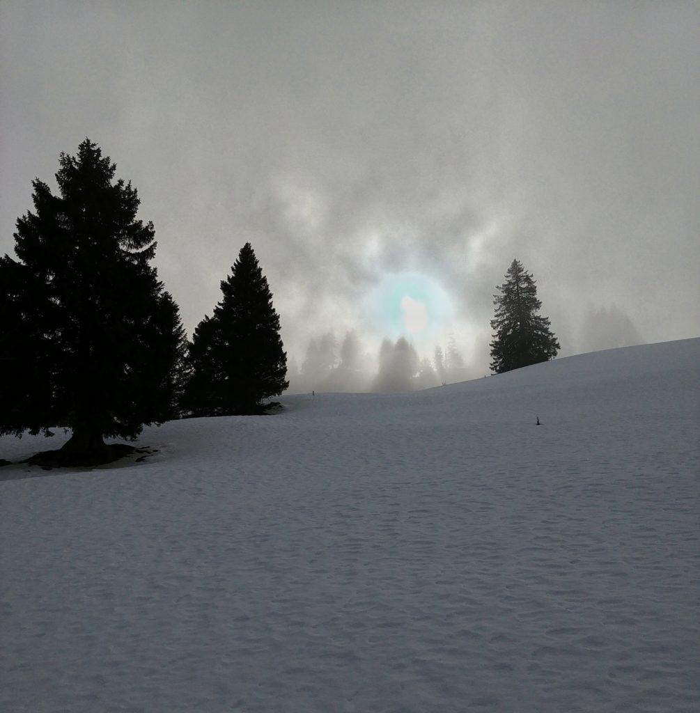 Winterwanderung Stoos