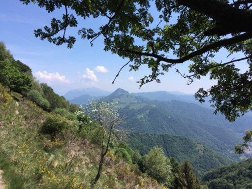 Foto Kurt: Weg von den Alpen Nadigh und Genor nach Bellavista