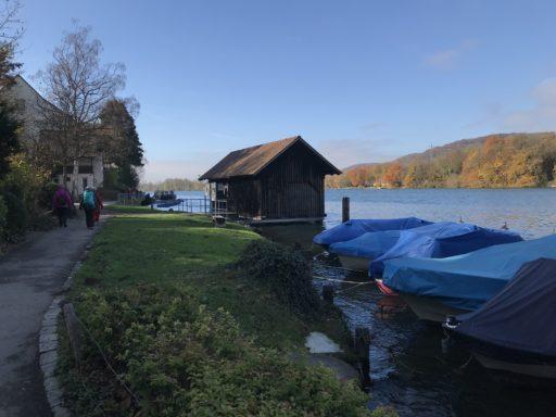 Rhein zwischen Rheinfelden und Kaiseraugst