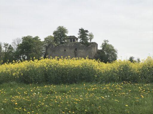 Ruine Neuschauen-Burg