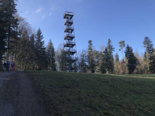 Der frühere Bachtelturm steht seit 1992 hier auf dem Pfannenstiel