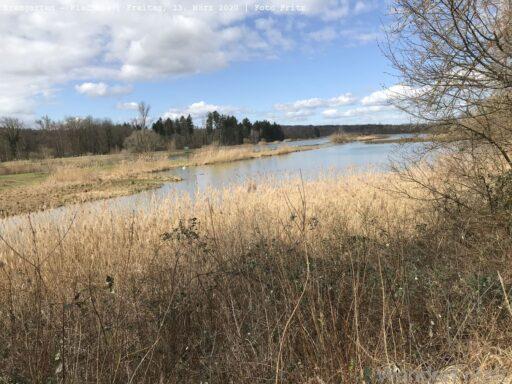 Der Flachsee