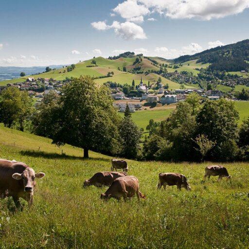 Schwarzenberg - Eigenthal - Krienseregg Foto3