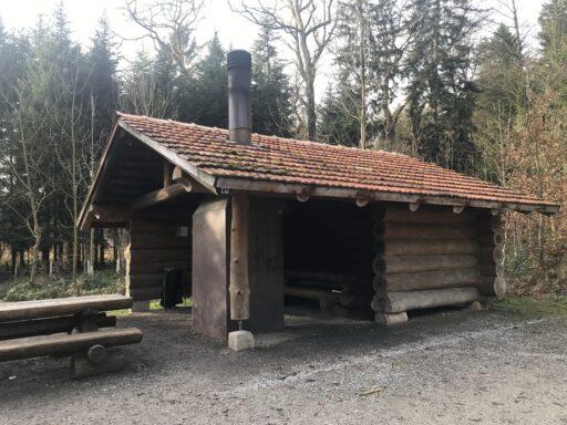 Grillstelle im Bollwald