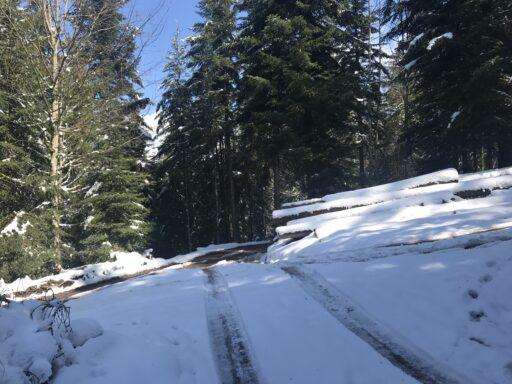 Noch ein bisschen im Schnee