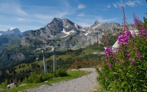 Bildquelle  «Gäste-Info Braunwald»