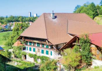 Bild1 Burgdorf - Aemmeshrimp - Burgdorf