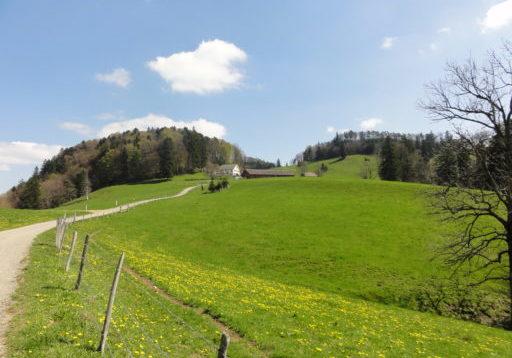 Wanderung Wasserfallen - Stierenberg - Nunningen