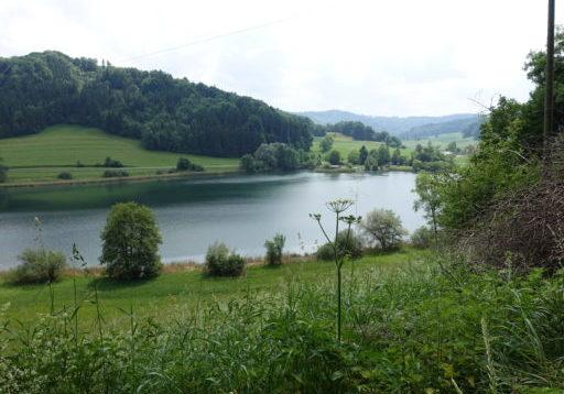 Turbenthal - Bichelsee
