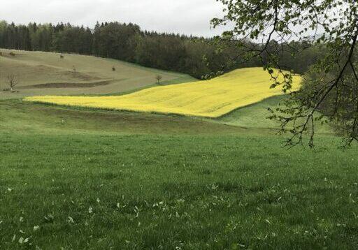Hofen - Reiatweg _028