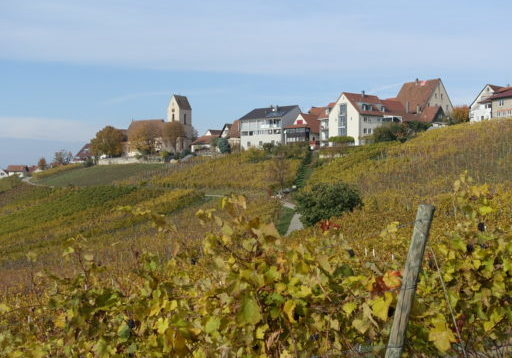 Riehen - Wiiwegli - Haltingen _ 064