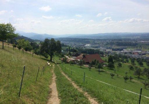 Rontalerhöhenweg Bild 1