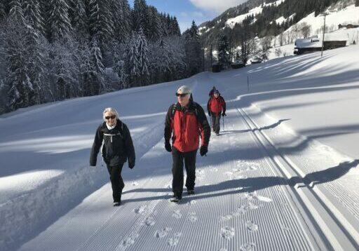 Ideale Winterwanderung