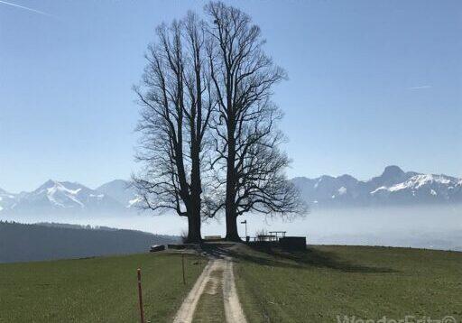 Fantastischer Aussichtspunkt Ballenbühl